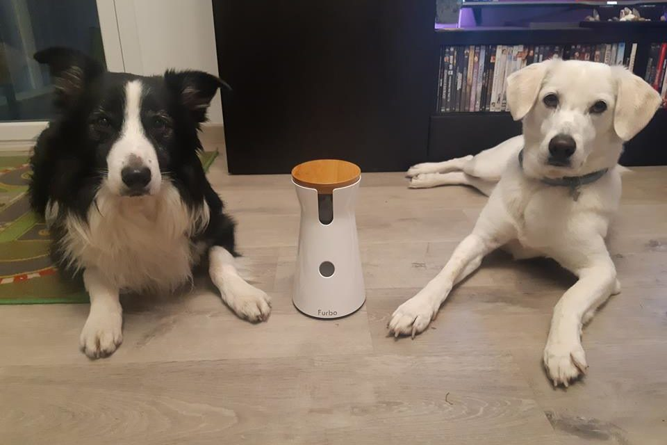Unboxing Furbo Dog camera